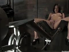 Amazing: 953 Videos