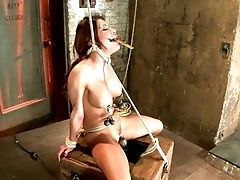 Alexa Nicole, BDSM, Big Tits, Dungeon, Fetish, Ginger, HD, Hogtied, Sex Toys,