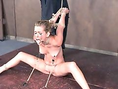 BDSM, Bondage, Fetish, Sasha Heart, Sexy, Submissive, Torture,