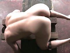 BDSM, Bondage, Dick, Femdom, HD, Masturbation, Rough, Wild,