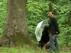 Natura: 1232 Video