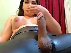 Bbw ladyboy sex